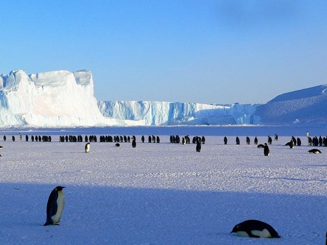 वर्ल्ड की सबसे ठंडी जगह वोस्टोक स्टेशन, अंटार्कटिका - Vostok Station, Antarctica Coldest Place In World In Hindi