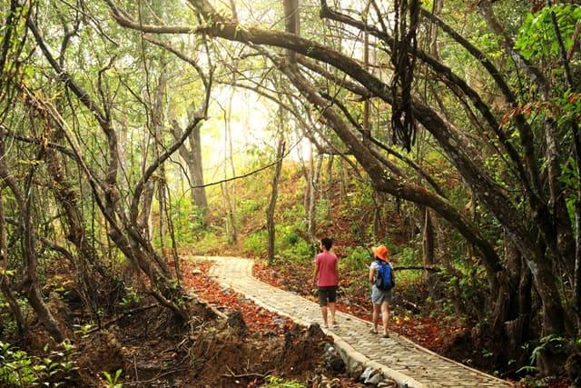 अंडमान निकोबार में घूमने की जगह माउंट हैरियट और मधुबन - Mount Harriet And Madhuban In Andaman And Nicobar Island In Hindi