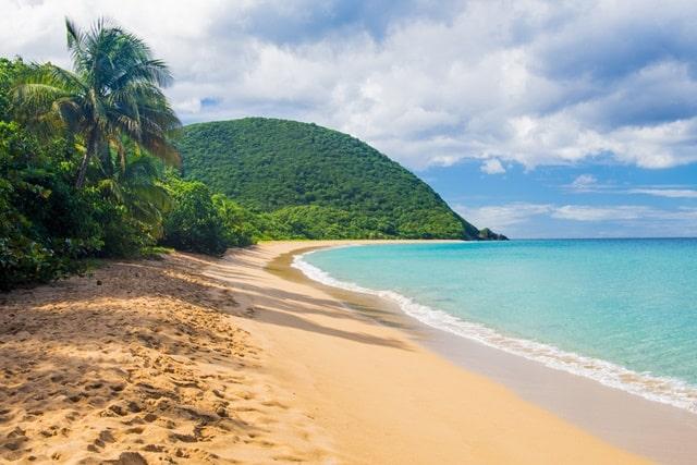 अण्डमान और निकोबार में देखने की जगह राधानगर बीच - Radhanagar Beach In Andaman And Nicobar Island In Hindi