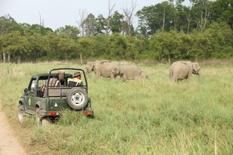 भारत के प्रमुख राष्ट्रीय उद्यान की जानकरी - National Park In India In Hindi