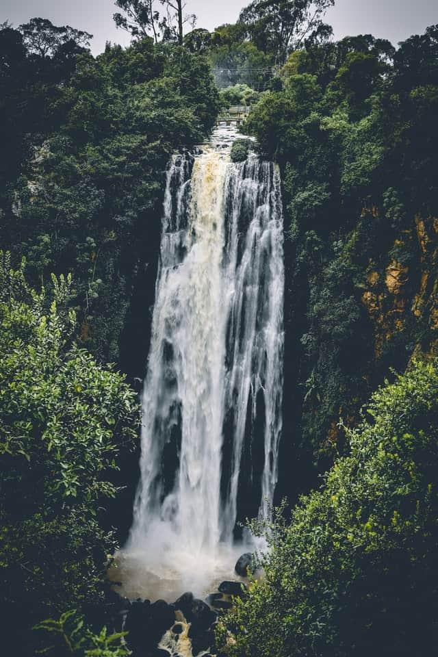 एंजिल वाटर फॉल घूमने का सही समय - Best Time To Visit Angel Water Falls In Hindi