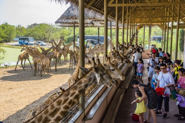 सफारी वर्ल्ड बैंकॉक का पर्यटन स्थल - Safari World In Bangkok In Hindi