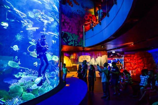 बैंकॉक दर्शनीय स्थल सियाम ओशियन वर्ल्ड - Siam Ocean World In Bangkok In Hindi