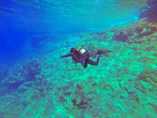 नेतरानी द्वीप कर्नाटक में स्कूबा डाइविंग - Netrani Island, Karnataka Scuba Diving In Hindi