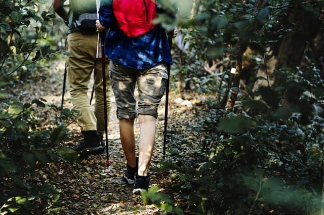 जंगल एडवेंचर