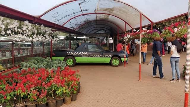 मैप्रो गार्डन - Mapro Garden & Chocolate Plant In Hindi