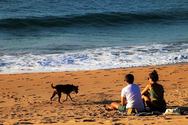 चपोरा बीच घूमने के लिए टिप्स - Tips For Travellers In Chapora Beach In Hindi