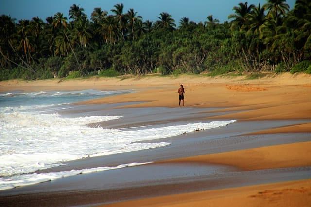 चपोरा बीच कैसे पहुंचे – How To Reach Chapora Beach In Hindi