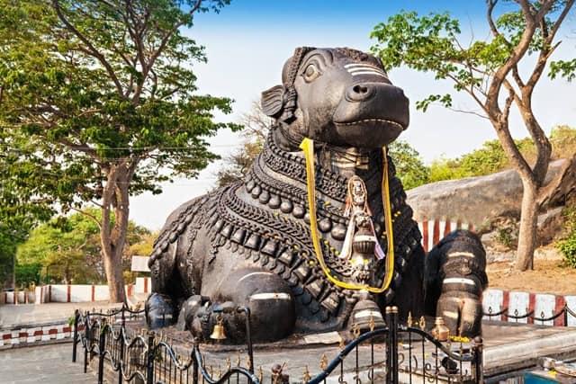 मैसूर पर्यटन में मशहूर चामुंडी हिल्स नंदी – Mysore Point Of Interest Nandi Bull On Chamundi Hills In Hindi