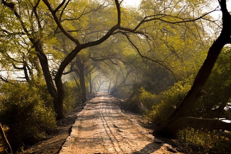 भरतपुर के दर्शनीय स्थल की जानकारी – Bharatpur Tourist Places In Hindi