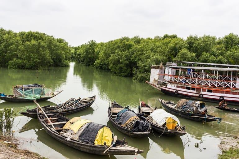 पियाली नदी