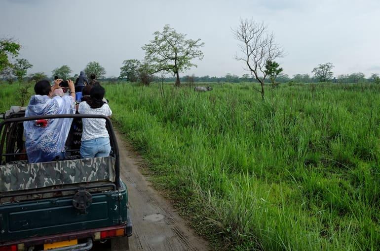 अकेली औरत के लिए भारत में घूमने की सुरक्षित जगह काजीरंगा राष्ट्रीय उद्यान असम