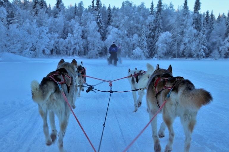 लडकियों के घूमने के लिए सबसे सुरक्षित देश फिनलैंड