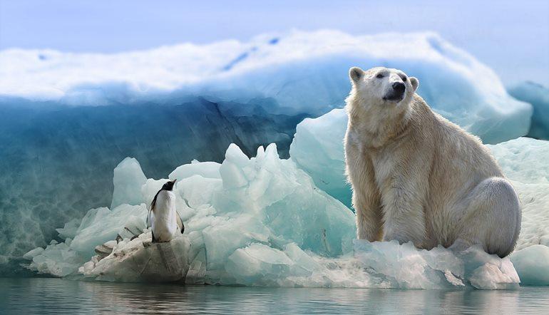 अंटार्कटिका संधि क्या है