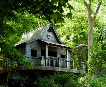 भारत के टॉप 10 रोमांटिक ट्री हाउस - Top 10 Tree House Resort In India In Hindi