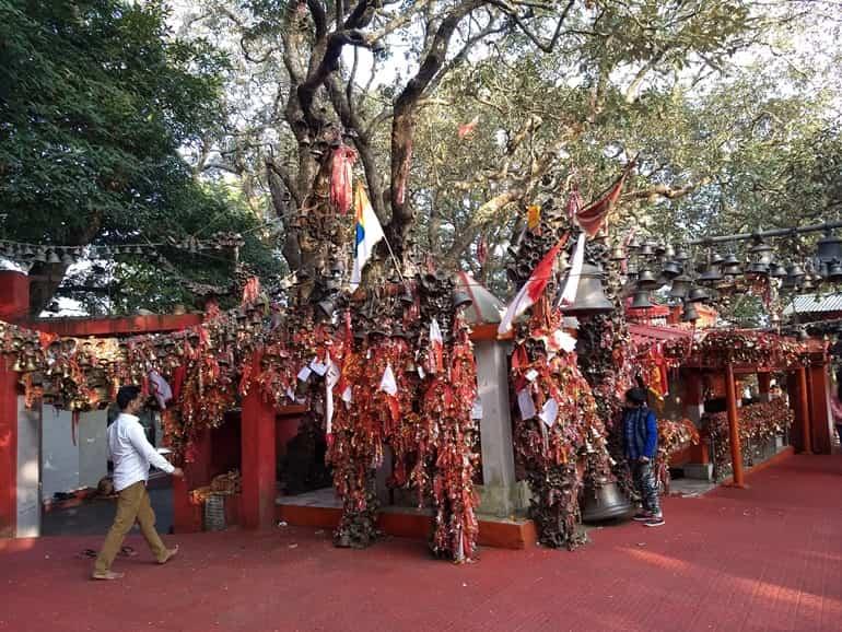 भुवाली के धार्मिक स्थल गोलू देवता मंदिर
