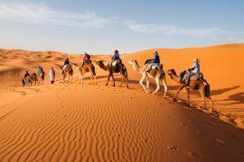 सहारा मरुस्थल के बारे में रोचक तथ्य और अन्य जानकारी – Sahara Desert In Hindi