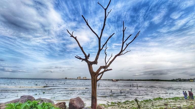 कोच्चि का प्रमुख पर्यटन स्थल वीरनपुझा बीच - Kochi Ka Pramukh Prayatan Sthal Veeranpuzha Beach In Hindi