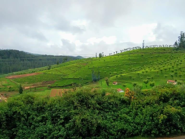 कुन्नूर पर्यटन में घूमने के लिए खुबसूरत स्थान केटी वैली – Coonoor Paryatan Me Ghumne Ke Liye Khubsurat Sthan Ketti Valley In Hindi