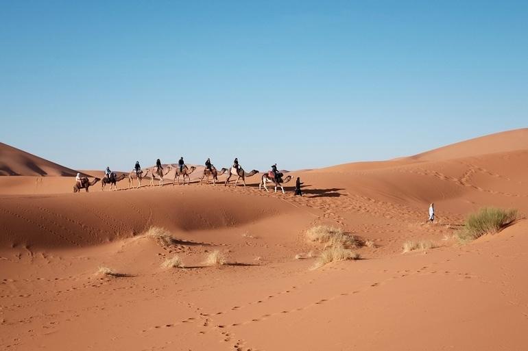 थार मरुस्थल राजस्थान में क्या क्या कर सकते हैं - Things To Do In Thar Desert In Hindi