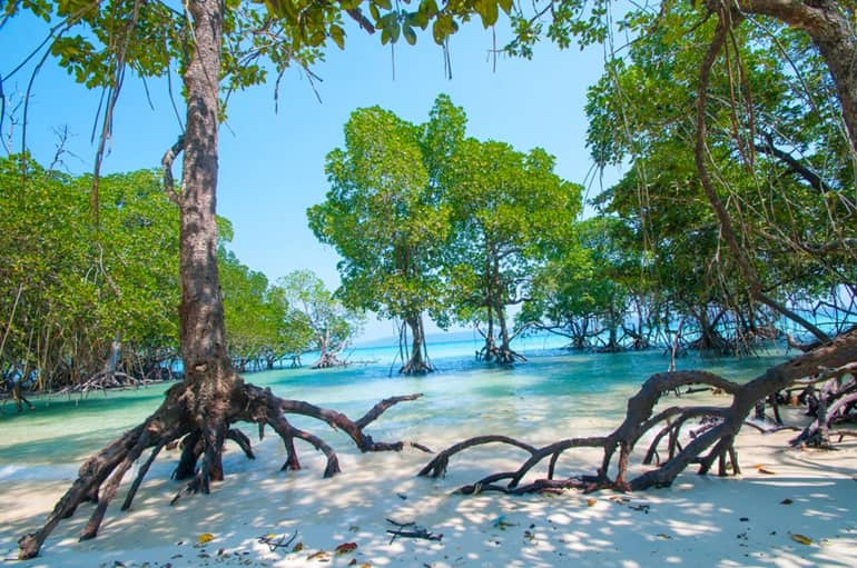 Tourist Places In Port Blair In Hindi