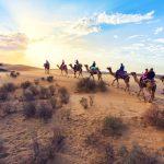 राजस्थान के थार मरुस्थल के बारे में जानकारी - Thar Desert In Hindi