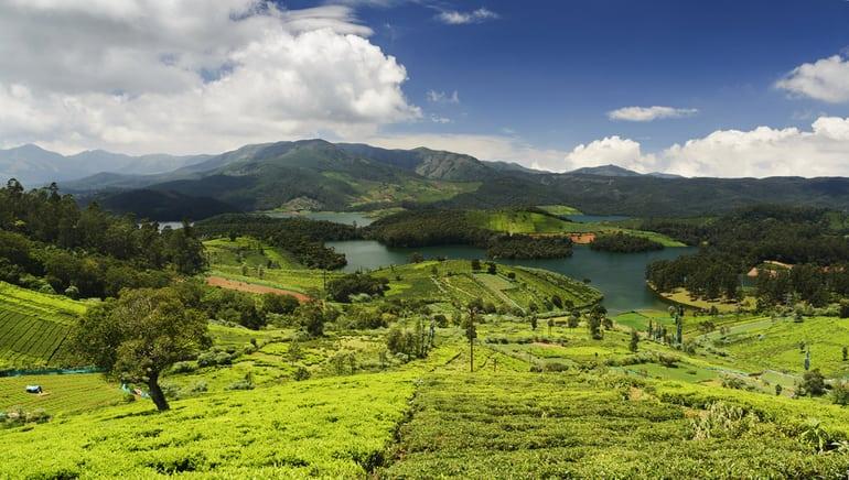 कुन्नूर का आकर्षण स्थल हिडन वैली - Coonoor Ka Aakarshan Sthal Hidden Valley In Hindi