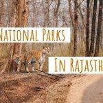 राजस्थान के प्रमुख राष्ट्रीय उद्यान के नाम - National Parks In Rajasthan In Hindi