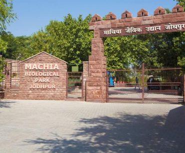 जोधपुर के माचिया जैविक उद्यान घूमने की जानकारी - Machiya Park In Hindi