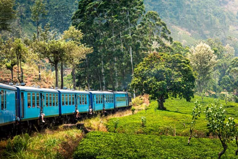 नीलगिरि माउंटेन रेलवे - Nilgiri Mountain Railway in Hindi