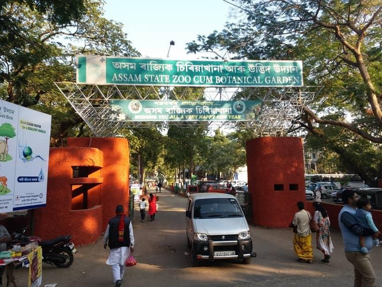असम स्टेट जू (असम राज्य चिड़ियाघर) घूमने की पूरी जानकारी - Assam State Zoo in Hindi